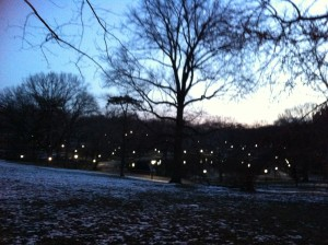 Central Park before sunrise.